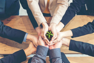 group of hands with plant at the center